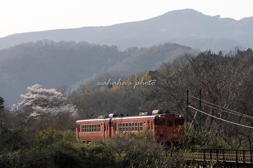 020321tsuyama-8.jpg