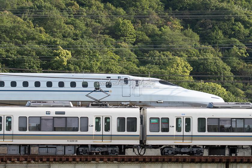 020523ichikawa-1.jpg