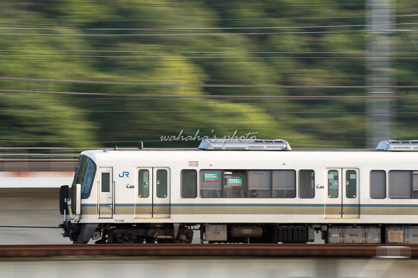 020523ichikawa-3.jpg