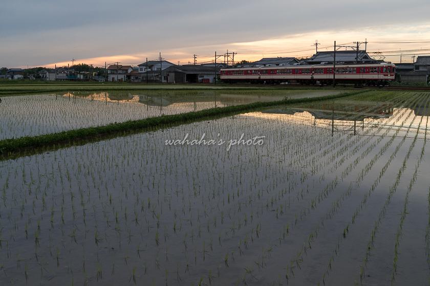 200617sintetsu_hata-3.jpg