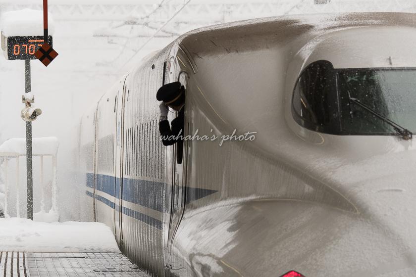 201231maivara-11.jpg