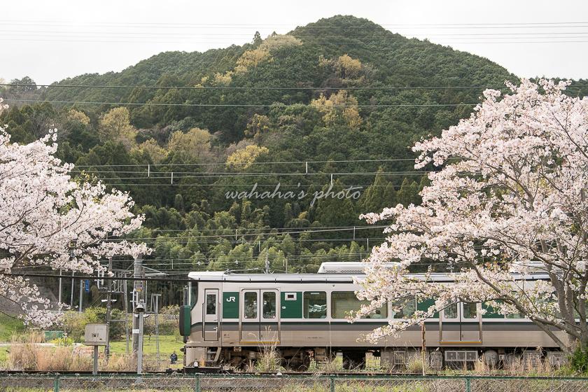 210403kintetsu-8.jpg