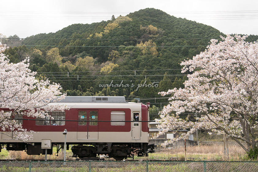 210403kintetsu-9.jpg