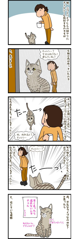 20042020_catcomic.jpg