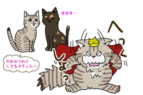 25042020_Cat.jpg