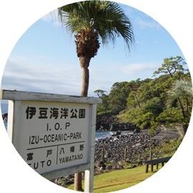 2 伊豆海洋公園
