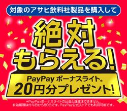 絶対もらえる20円プレゼント