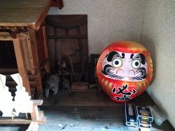 kurosawa019.jpg