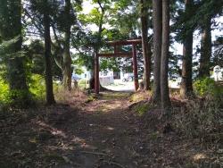 kurosawa041.jpg