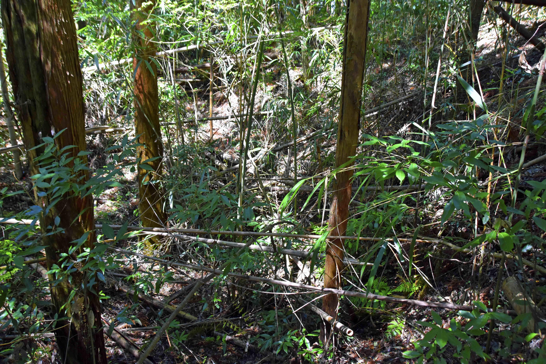 郭1虎口の土塁には内、外に堀が有る