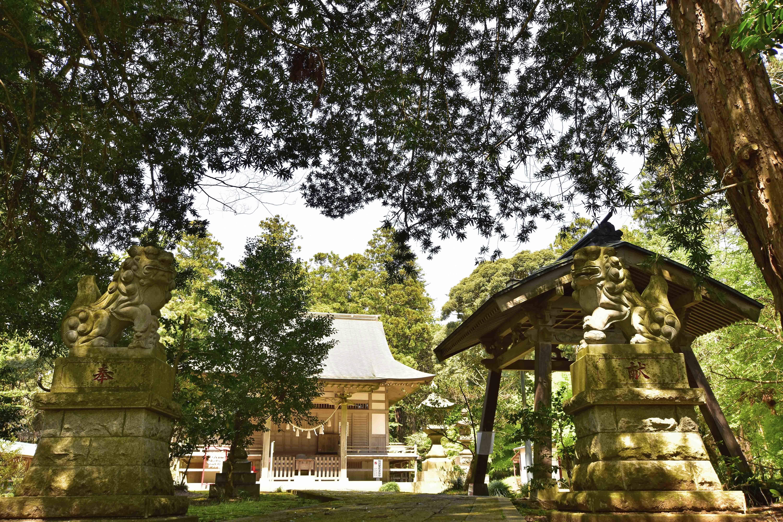 高田神社 狛犬