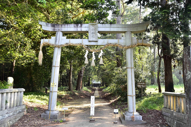1阿弥神社