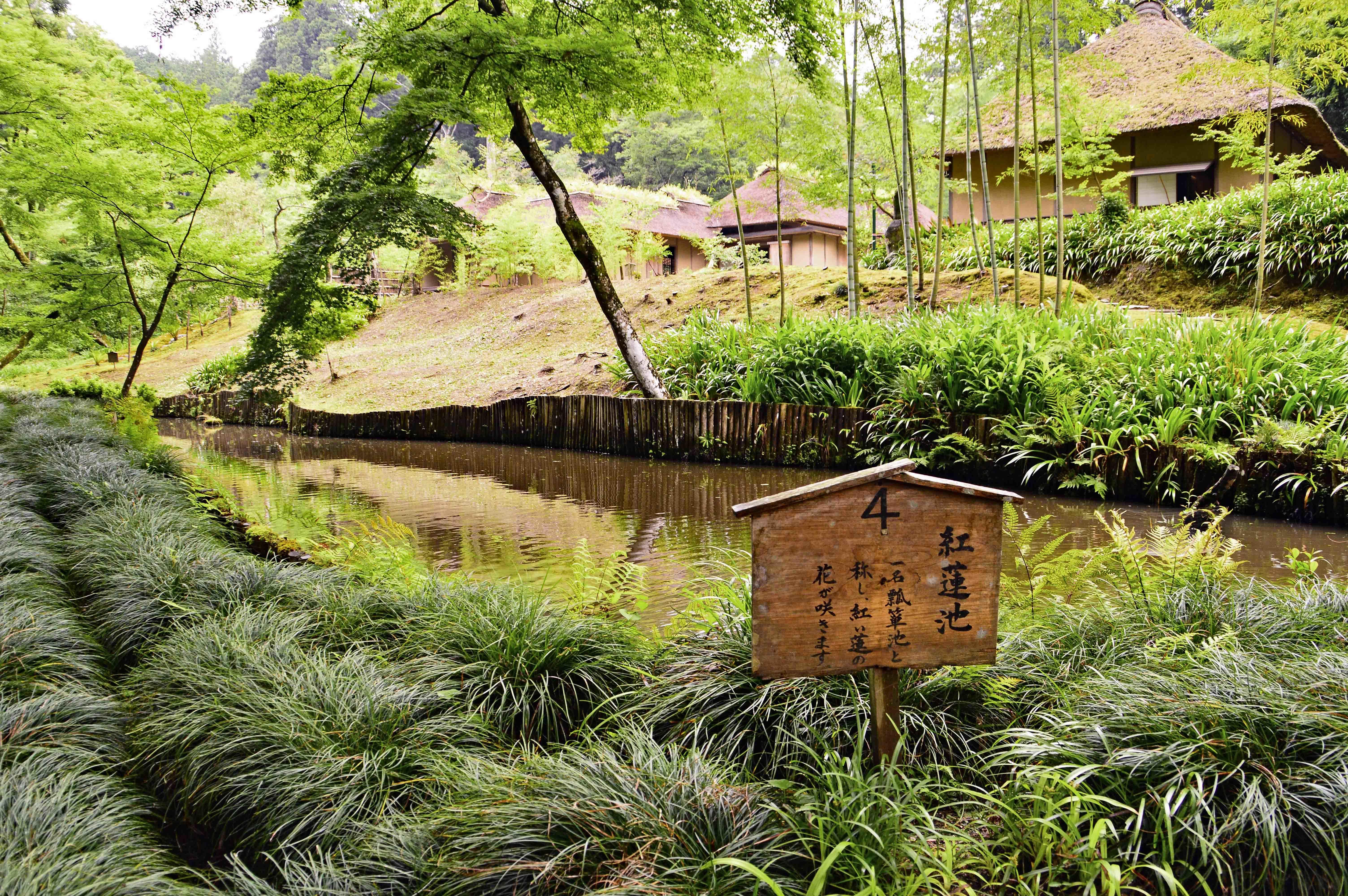 12紅蓮池