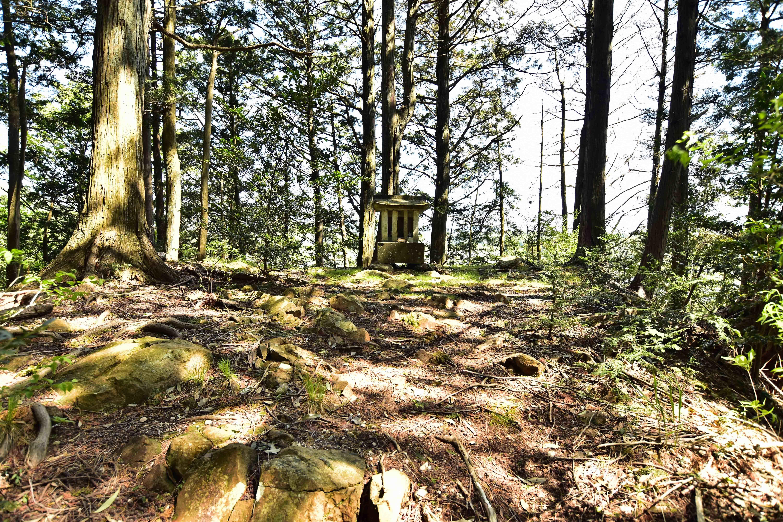 4神社東側の稲荷神社は櫓台
