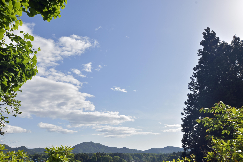 福泉寺から見える風景