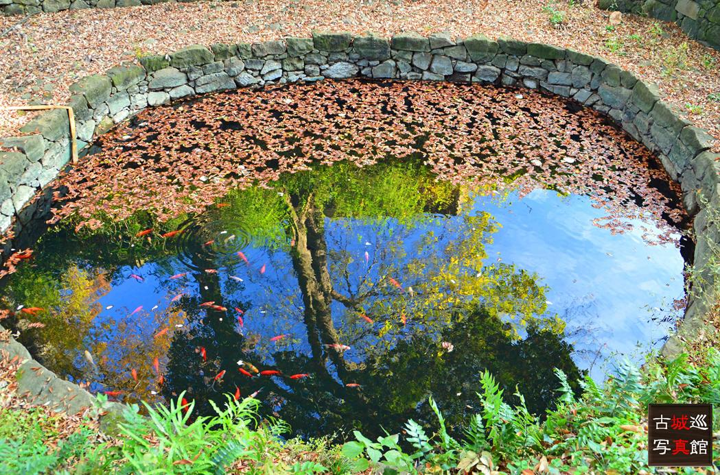 大手側の月の池