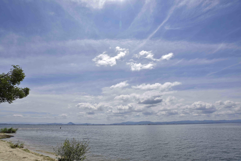 公園側の琵琶湖