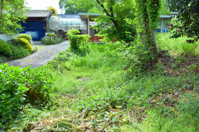 6北側の東止まりの堀と土塁