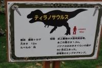 ティラノサウルス①