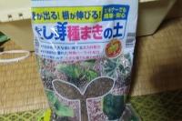 苗作り用土③