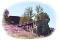 村の展望台①