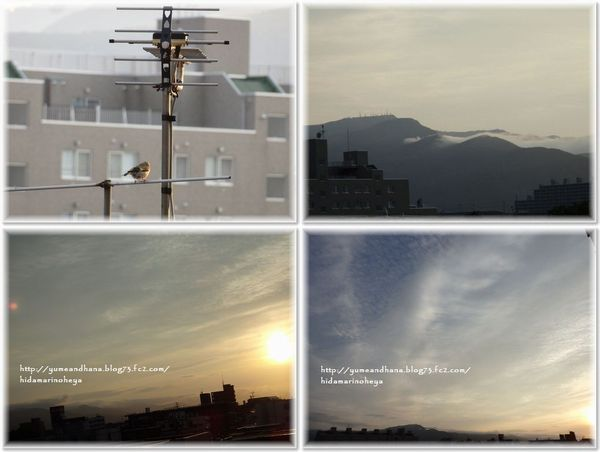001-夕陽200711-1909-2
